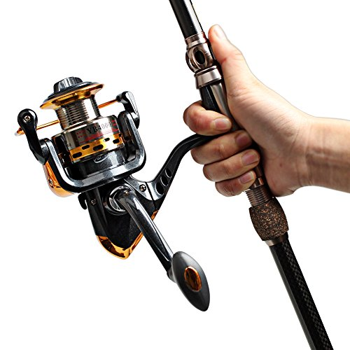 How to clean fishing reels using ultrasonic cleaning devices for Most expensive fishing reel